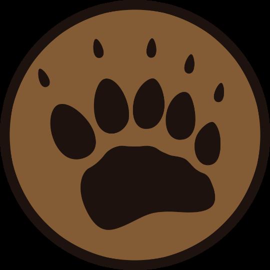 BearFive logo